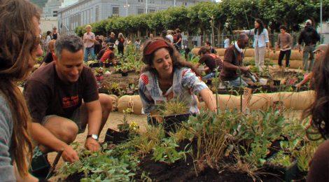 『都市を耕す エディブル・シティ』この映画を観ると、食に関する対話が広がり、できることから始めたくなる!